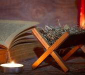 Solenidade de Cristo Rei marca um Tempo Novo para a Igreja